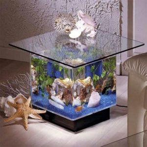 аквариум3