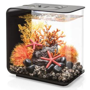 аквариум6